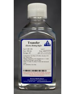 Transfer (Electro) Blotting Buffer